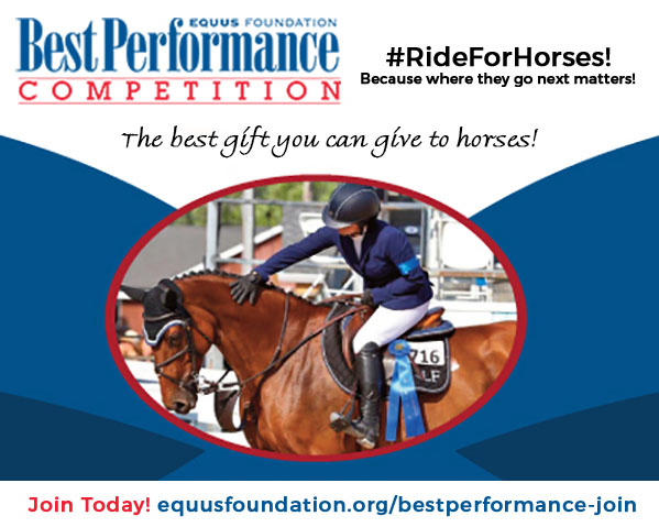Make your gift for horses this year!