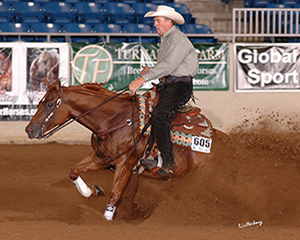 2014 Horse Stars Hall of Fame Inductee A Ruf Gal