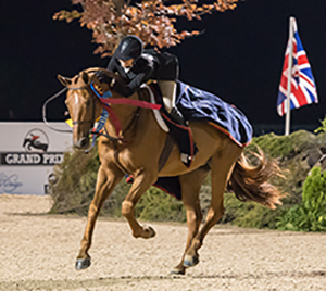 2014 Horse Stars Hall of Fame Inductee Brunello