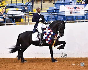 2015 Horse Stars Hall of Fame Inductee Elis GV