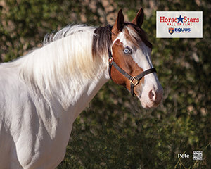 2015 Horse Stars Hall of Fame Inductee Pete