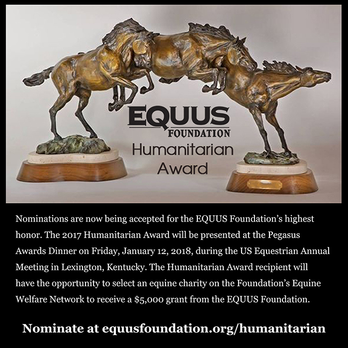 HumanitarianAward