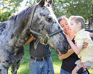 2018 Horse Stars Hall of Fame Inductee Zipped In Black Magic
