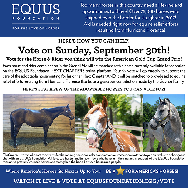 Vote at the American Gold Cup
