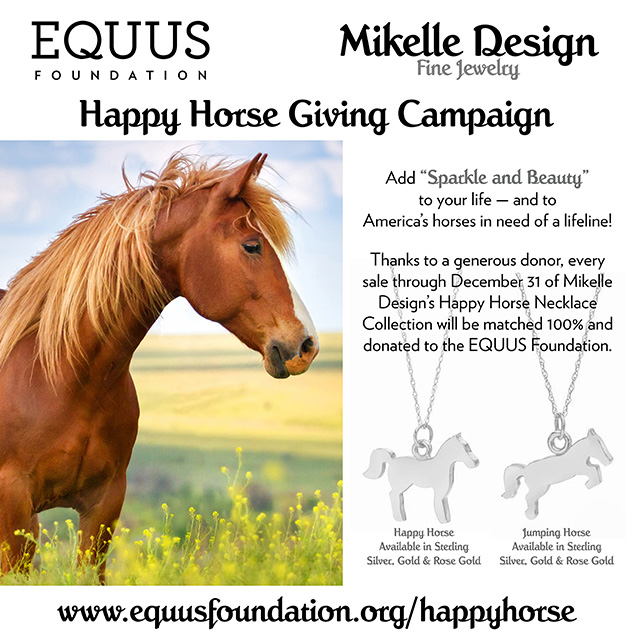 2018 Happy Horse Giving Campaign