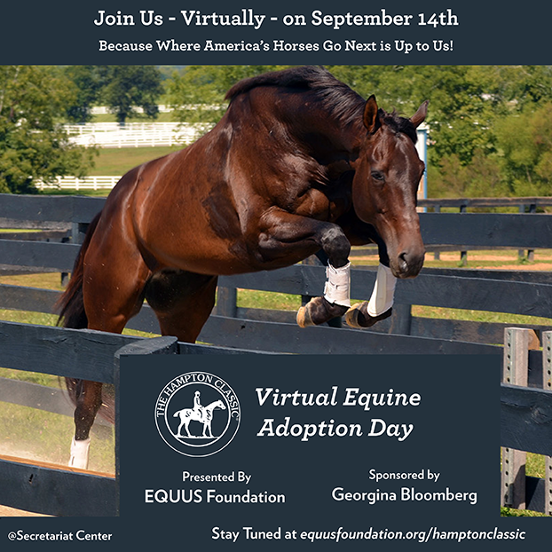 2020 Hampton Classic Virtual Equine Adoption Event presented by the EQUUS Foundation