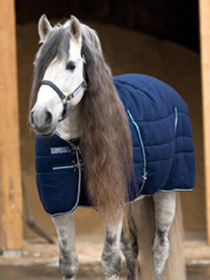 Free Horse Apparel for EQUUS Foundation Guardian Charities