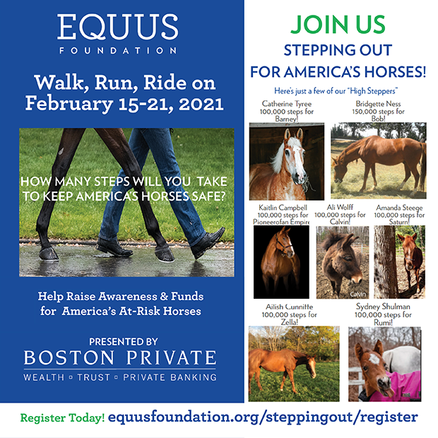 Stepping Out for America's Horses Begins Today with Over 3 Million Steps Pledged!