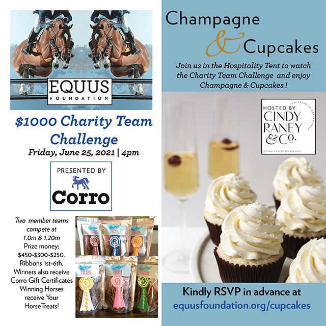 Champagne & Cupcakes and Charity Team Challenge