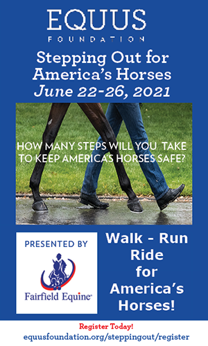 Stepping Out for America's Horses