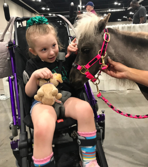 Mystery Selected as the 2020 WIHS Honor & Service Award Recipient